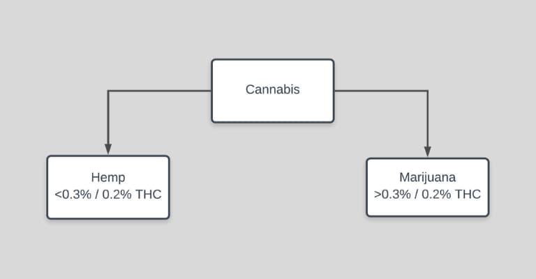 hemp vs marijuana definition