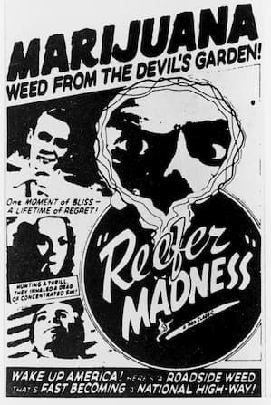 hemp and marijuana