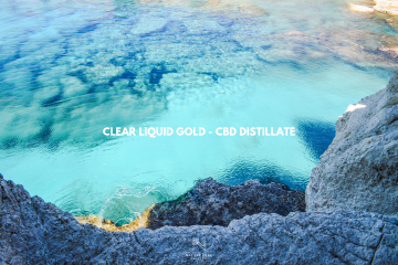 liquid gold distillate placeholder image