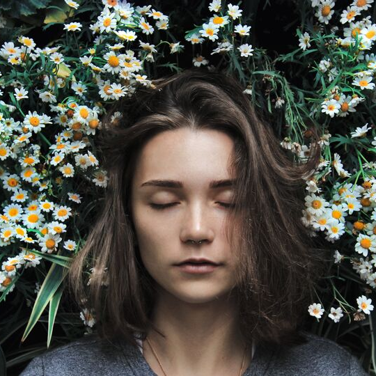 floating on flowers