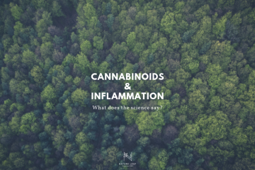 Cannabinoids and Inflammation text on green trees