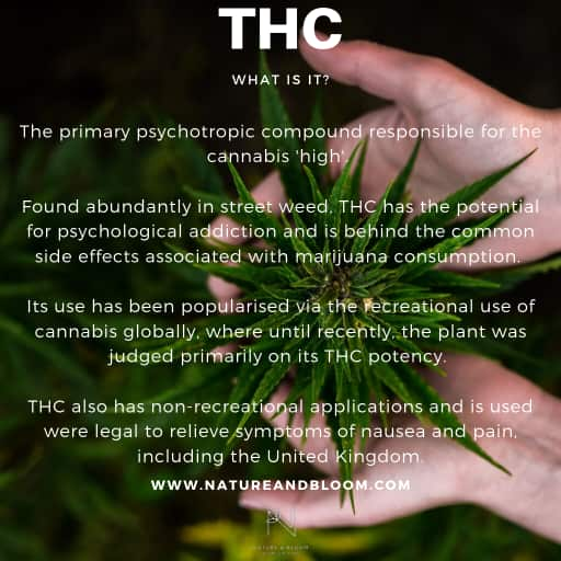 the benefits of THC