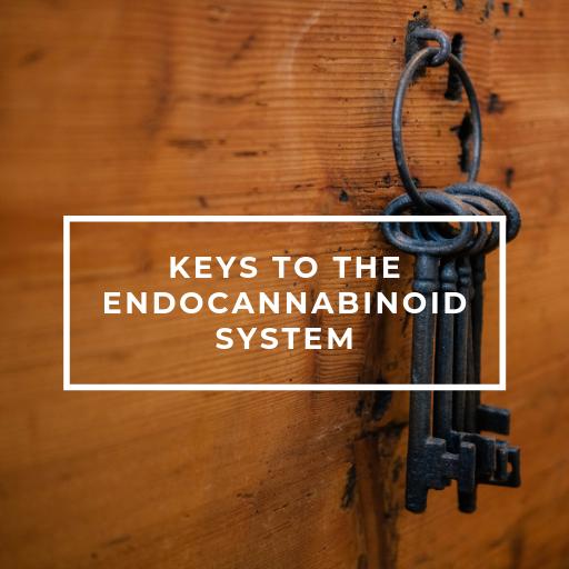 ECS Keys
