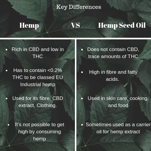 cbd oil benefits vs hemp seed