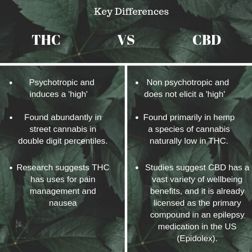 key differences between cbd and thc