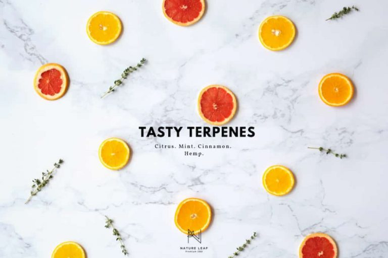 What Are Terpenes? Cannabis Derived Terps VS Bontanical