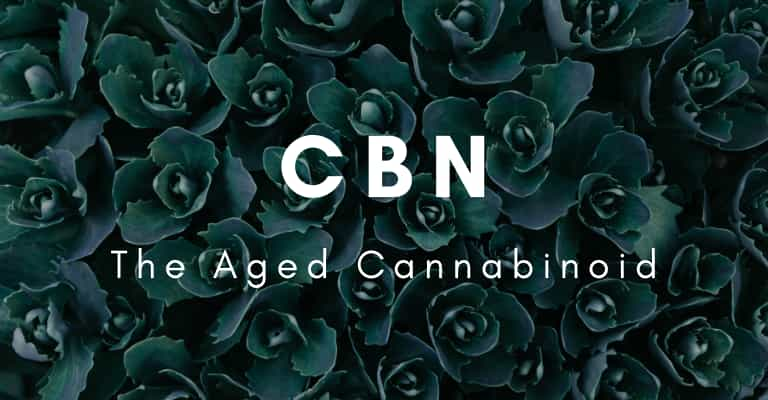 The benefits of CBN