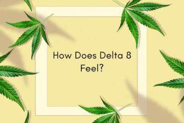 D8 Feels