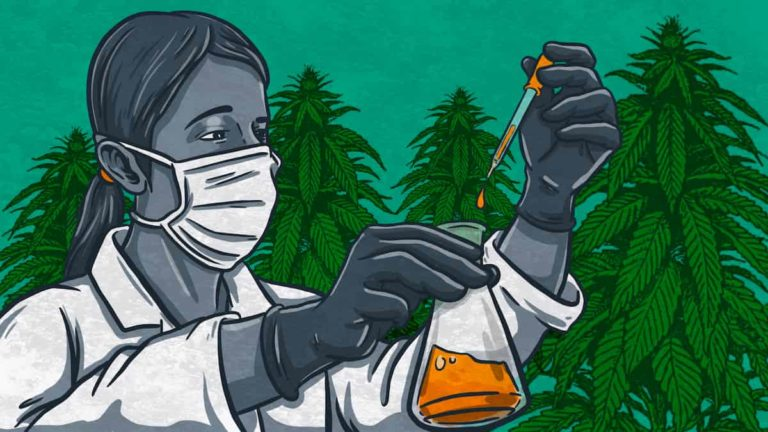 Common CBD Oil Side Effects And Risks